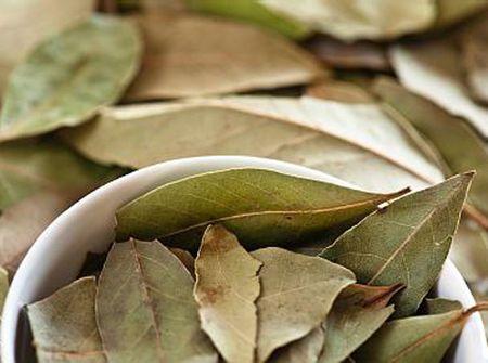 чай для обмена веществ и похудения