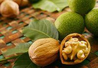 Польза грецкого ореха для предстательной железы