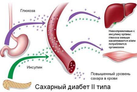 отвар от диабета