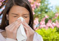 Яичная скорлупа излечит аллергию