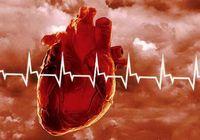 Шиповник как средство профилактики инфаркта миокарда