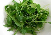 Руккола против рака: полезные свойства салатной пряности