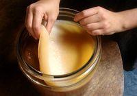 Чайный гриб поможет вылечить грибкок ногтей